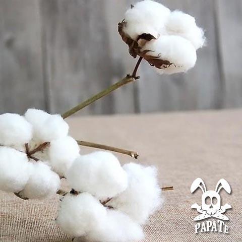 coton bio papate pour confection puericulture bio lapin tete mort